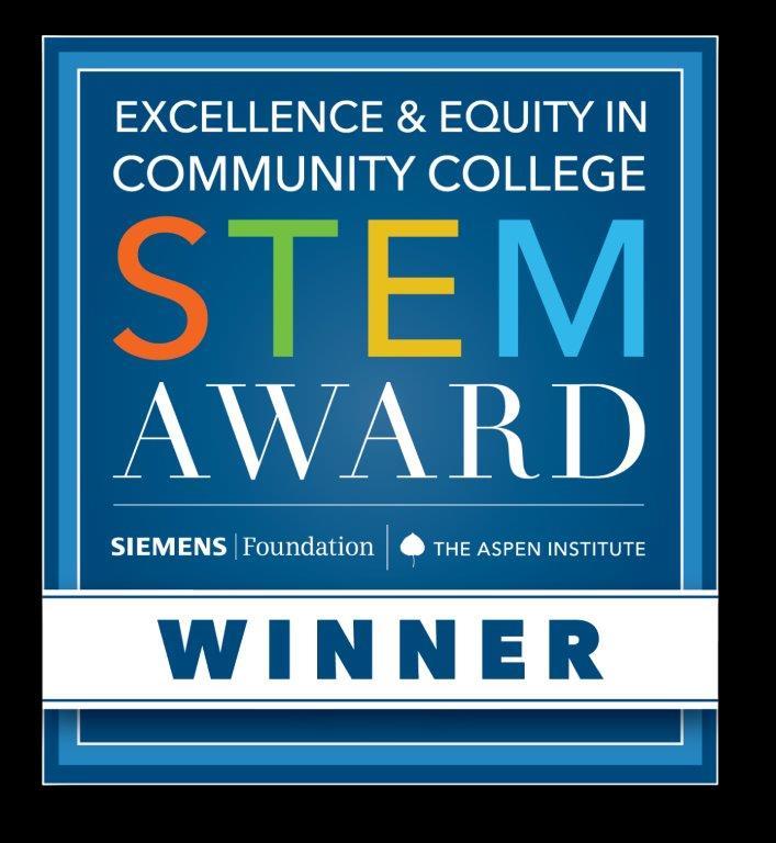 2020 Siemens Aspen Stem Award